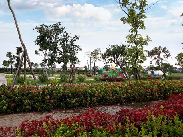 Tại Apec Đa Hội, chủ đầu tư dành tới 37,5% diện tích cho mảng xanh và tiện ích