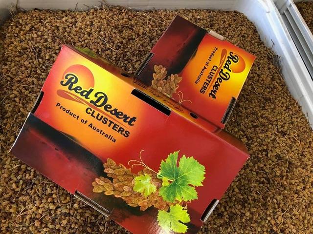 Nho khô nguyên cành Red Desert Clusters nhập khẩu chính hãng của Úc được Công ty TNHH Sơn Lâm Nutrifood phân phối độc quyền tại Việt Nam