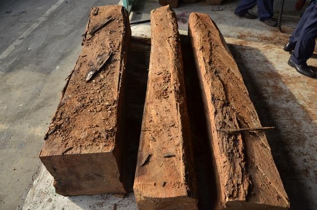 Những khúc gỗ chứa ngà voi được để lẫn trong các khúc gỗ bình thường rất khó để phát hiện