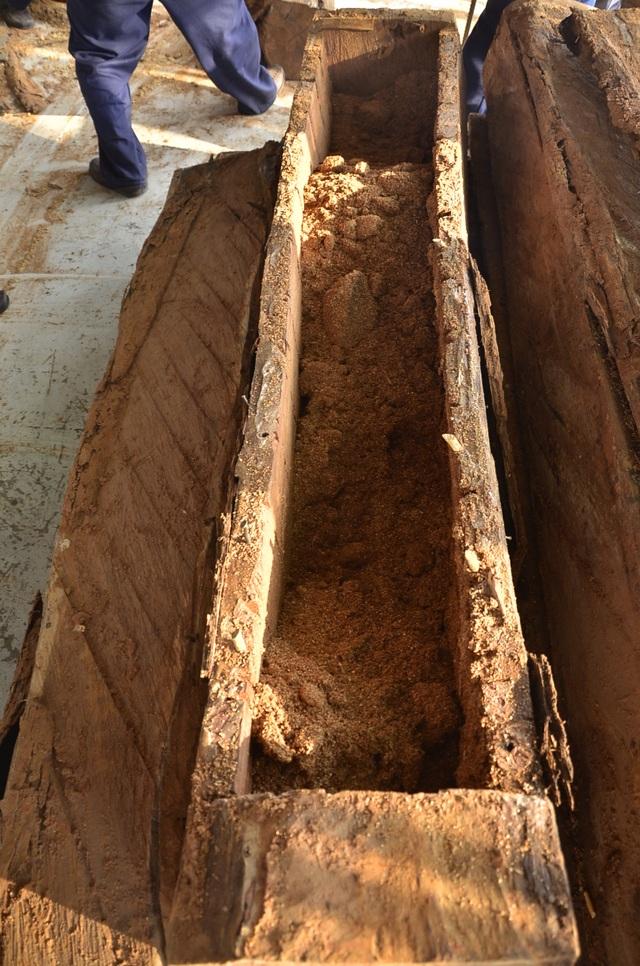 Những khúc gỗ sau khi lấy ngà voi ra