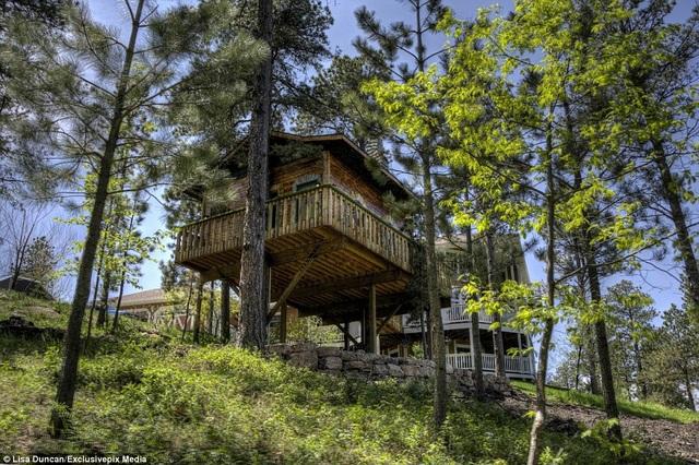Ngôi nhà cây cách mặt đất gần 5m, được thiết kế như ngôi nhà cổ tích trong giấc mơ tuổi thơ.