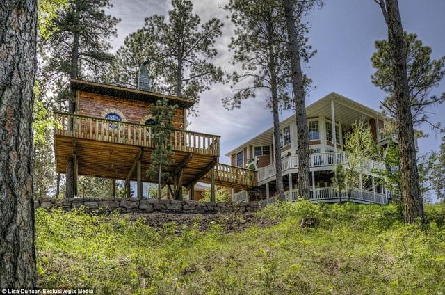 Ngôi nhà cây được liên kết với khu nhà 4 phòng ngủ, đủ sức chứa tới 16 người.