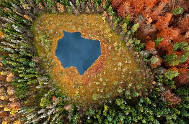 Hồ Forest ở Phần Lan ở cùng chung góc chụp nhưng tại hai thời điểm khác nhau