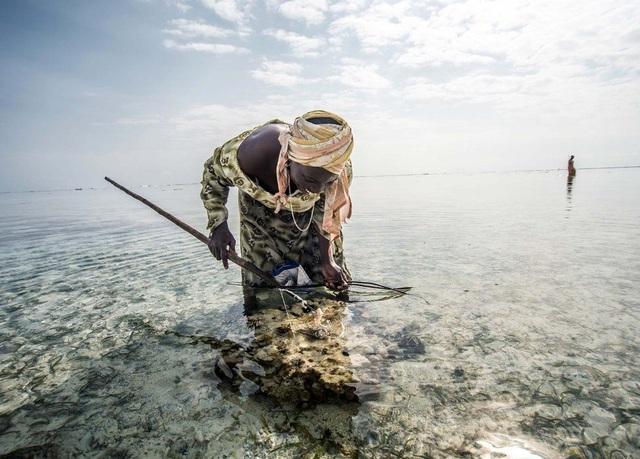 Những người thợ săn mang theo các dụng cụ đánh bắt thô sơ