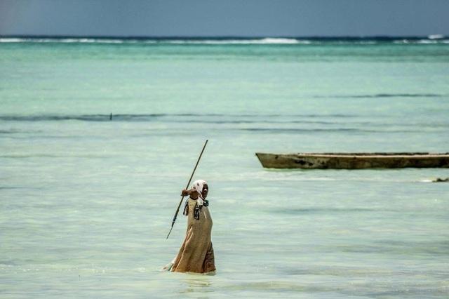Trước đây đa phần những người đánh bắt bạch tuộc là nữ giới