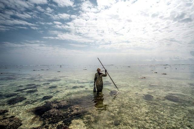Tanzania là quốc gia cung cấp nguồn bạch tuộc lớn ở miền tây Ấn Độ Dương