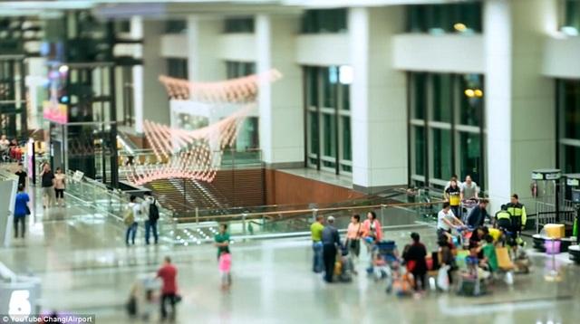 Mỗi ngày, Changi đón tiếp hơn 145.000 lượt khách và nhận giải thưởng cao quý do Skytrax bình chọn hồi tháng 3 vừa qua.