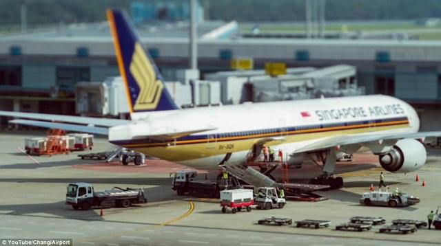 Ngoài đường băng, những chiếc máy khổng lồ được làm sạch và kiểm tra. Trong khi đó, hàng hóa xếp lên máy bay nhanh chóng và tiện lợi.