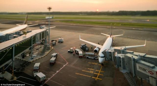 Đây là sân bay bận rộn thứ 6 thế giới. Trung bình mỗi máy bay cất và hạ cánh 90 giây.