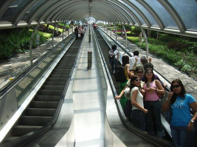 Du khách hào hứng trải nghiệm thang máy ngoài trời dài nhất thế giới