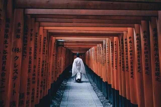 Ngôi đền linh thiêng Fushimi Inari Taisha nằm trên núi Inari, thờ phụng nữ thần gạo và thịnh vượng. Đền nổi tiếng với hàng ngàn chiếc cổng màu đỏ bao quanh những con đường mòn xinh đẹp.