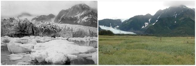 Những khối băng khổng lồ trên sông băng Pedersen ở Alaska, Mỹ gần như hoàn toàn biến mất. Bên trái là hình ảnh chụp vào mùa hè năm 1917, còn bên phải là ảnh chụp mùa hè năm 2005.
