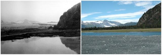 Sông băng Bear, Alaska. Ảnh chụp tháng 7/1909 và tháng 8/2005.