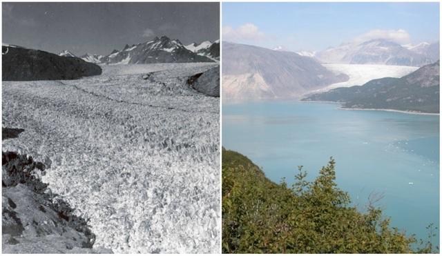 Sự khác biệt lớn nhất phải kể tới các sông băng. Tiếp tục một sông băng khác với những khối băng biến đổi vì hiện tượng thay đổi khí hậu. Trong hình là sông băng Muir, Alaska với ảnh chụp tháng 8/1941 và tháng 8/2004.