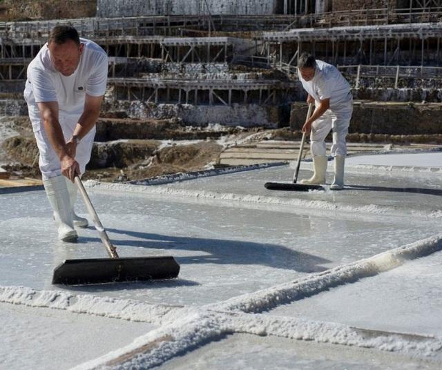 Quang cảnh làm việc của thợ làm muối