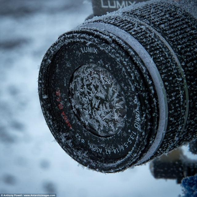Ống kính đông cứng