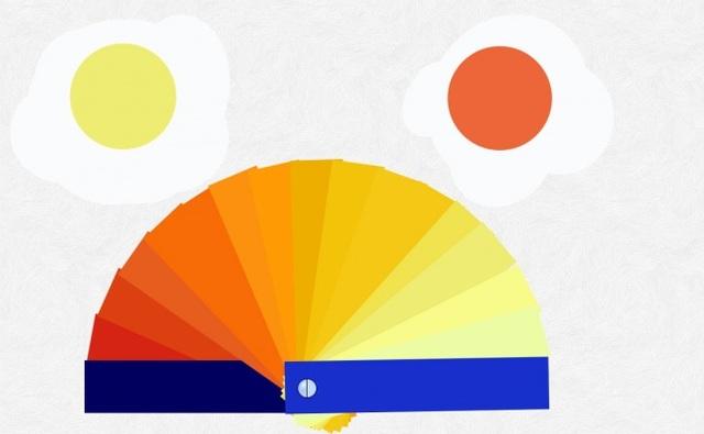 Bảng màu gồm 15 gam màu từ nhạt tới đậm để xác định chất lượng của trứng