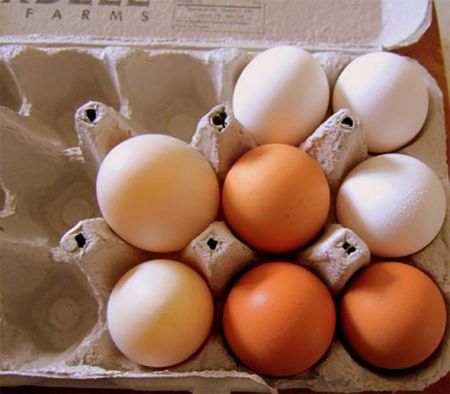 Khi chọn mua trứng, hãy để ý cả lớp vỏ bên ngoài