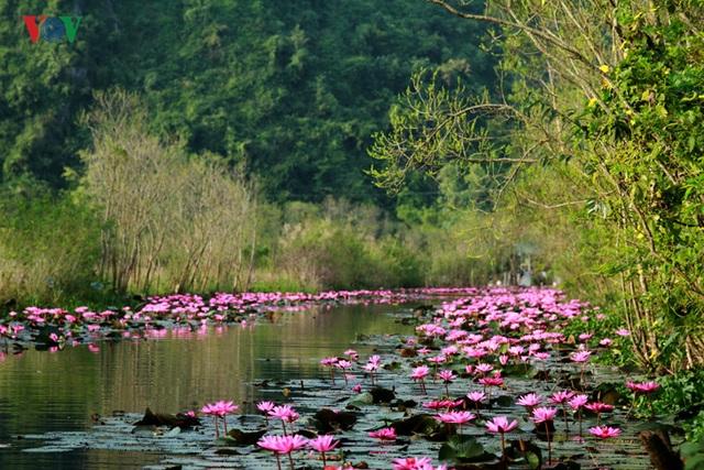 Suối Yến (hay còn gọi là Yến Vĩ) là một con suối nằm trong khu di tích thắng cảnh Chùa Hương (xã Hương Sơn, huyện Mỹ Đức, Hà Nội).