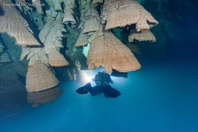 """Duy nhất ở Cenote Zapote mới sở hữu những """"chiếc chuông"""" dưới nước"""