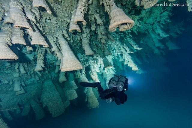 Địa điểm khám phá lý tưởng của những thợ lặn chuyên nghiệp và giới nhiếp ảnh gia