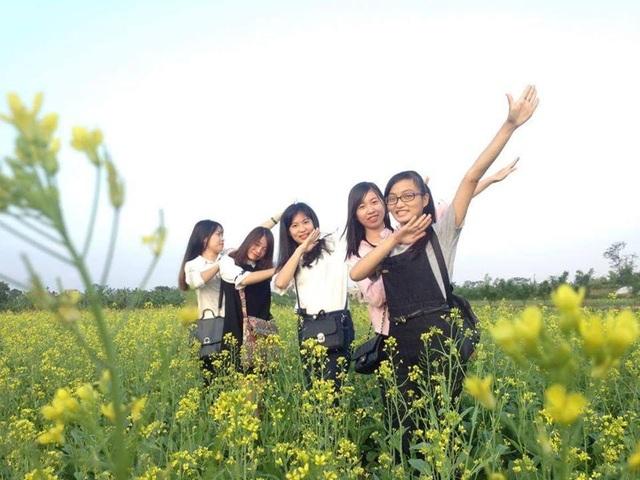 Ngỡ ngàng với cánh đồng hoa cải vàng rực rỡ đẹp bậc nhất Việt Nam - 6