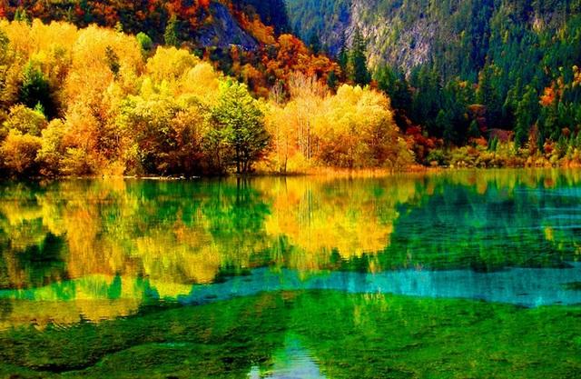 Cửu Trại Câu mùa lá đỏ với màu lá in bóng xuống mặt hồ trong suốt như tấm gương khổng lồ