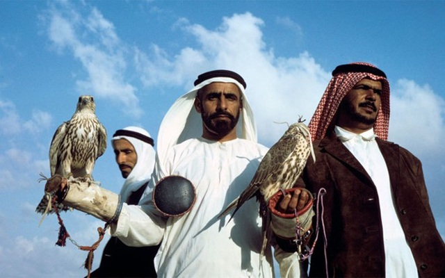 Thú chơi chim ưng thể hiện đẳng cấp của các đại gia Ả Rập
