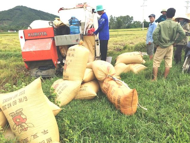 Máy gặt lúa phải đóng 2 triệu đồng đang gây bức xúc cho người dân ở xã Bắc Thành.