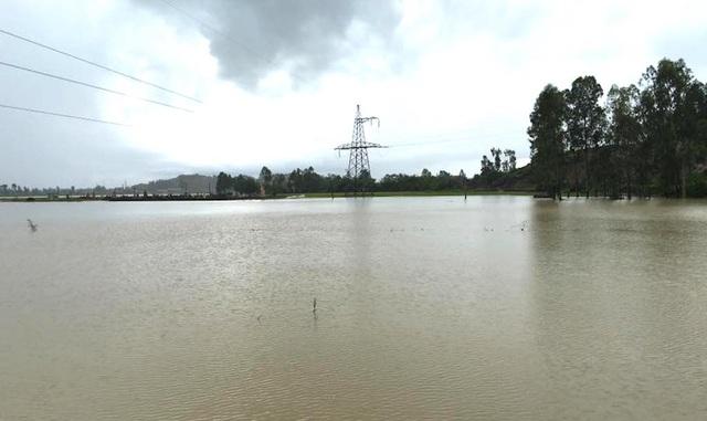 Nhiều vùng ở các xã miền xuôi mưa lớn gây ngập lụt.