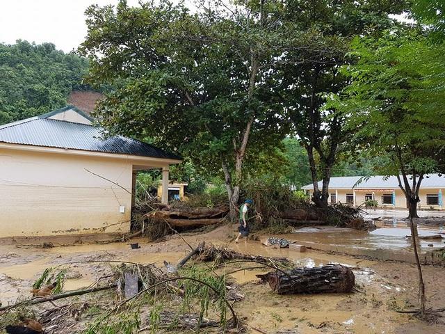 Một thân cây lớn trôi dạt và nằm mắc lại trong sân trường.