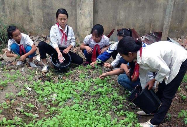 """Với quyết tâm xây dựng dựng trường xanh -sạch - đẹp và an toàn một trong những tiêu chí hướng tới mục tiêu """"Trường học thân thiện - học sinh tích cực"""" và xây dựng thành công trường chuẩn quốc gia trong năm học 2016-2017, sau giờ lên lớp, ngày ngày thầy, cô và học sinh Trường THCS Tam Thái thường xuyên chăm sóc vườn hoa, cây cảnh."""