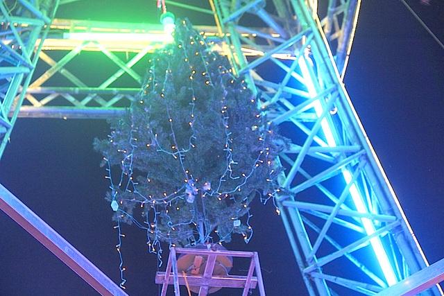 Cây thông là một phần không thể thiếu trong ngày Giáng sinh, bà con giáo dân đã khéo léo luồn cây thông vào phần trong lõi ngọn tháp.