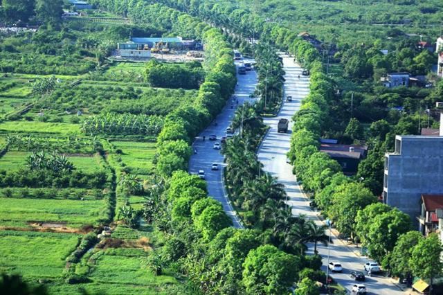 Với chiến lược tiên quyết là xây dựng khu đô thị sinh thái giao hoà với thiên nhiên, ngay từ khi bắt đầu chuẩn bị cho dự án cách đây hơn 10 năm, chủ đầu tư Ecopark đã đặc biệt chú trọng việc trồng, chăm sóc và phát triển mạng lưới cây xanh cho khu đô thị. Ấn tượng ngay từ cái nhìn đầu tiên với con đường dẫn vào khu đô thị từ lâu được biết đến như một trong những cung đường xanh đẹp nhất Hà Nội.