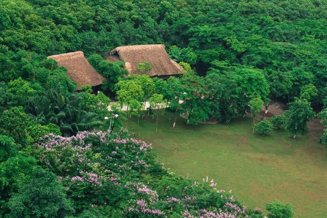 Màu xanh ngự trị tạo cảm giác thư thái như đang lạc bước vào chốn thần tiên. Vào những ngày hè nắng nóng kỷ lục, cây xanh có tác dụng rất lớn giúp làm giảm nhiệt độ không khí. Những khu vực rợp bóng cây có tác dụng ngăn bụi và lọc không khí, giúp bạn cảm thấy dễ chịu, thư thái hơn.