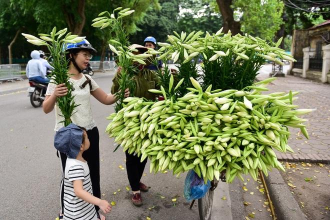 Tháng tư về, hoa loa kèn tinh khôi xuống phố Hà Nội - 15