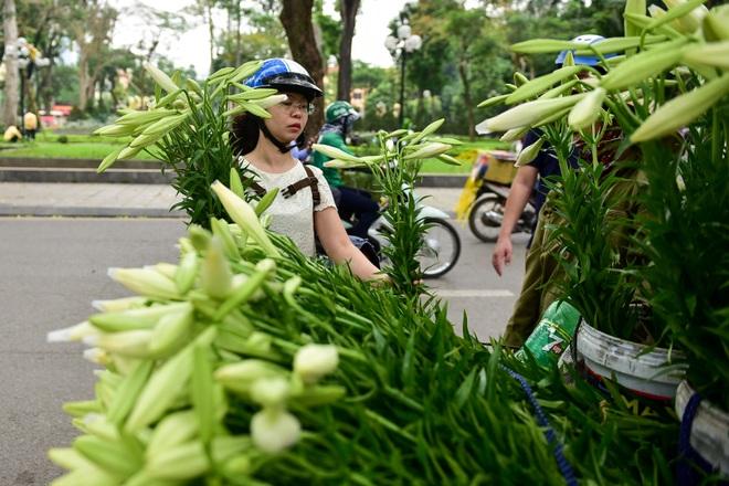 Tháng tư về, hoa loa kèn tinh khôi xuống phố Hà Nội - 13
