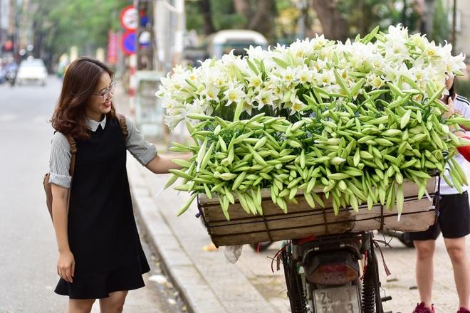 Tháng tư về, hoa loa kèn tinh khôi xuống phố Hà Nội - 18