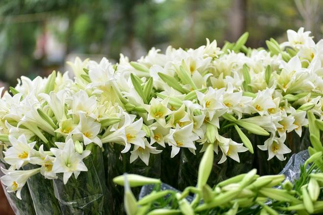 Tháng tư về, hoa loa kèn tinh khôi xuống phố Hà Nội - 14