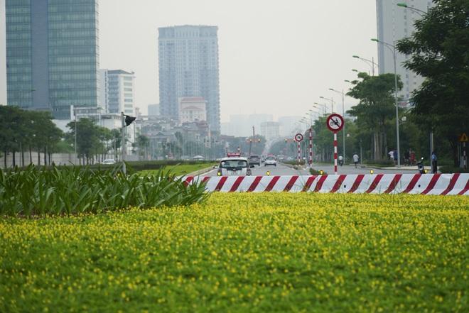 Toàn cảnh tuyến đường 8 làn kết nối 3 quận ở Hà Nội - 7