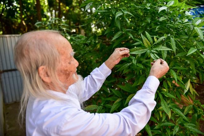 """Chuyện về """"ông Tiên"""" 97 tuổi có một không hai dưới chân núi Tản - 12"""