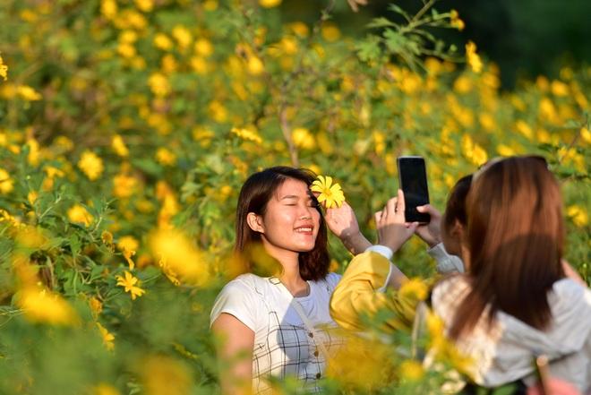 Giới trẻ đua nhau lên núi Ba Vì săn hoa dã quỳ - 20