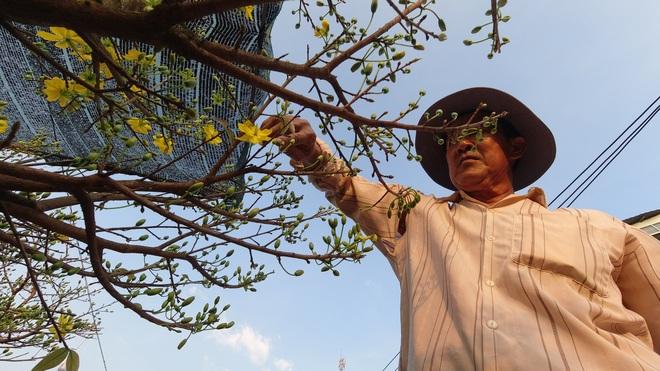 Một lần đi chợ hoa trên bến dưới thuyền độc, lạ nhất Sài Gòn - 7