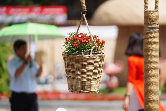 Mãn nhãn ngắm đường hoa Nguyễn Huệ trước giờ G - 9