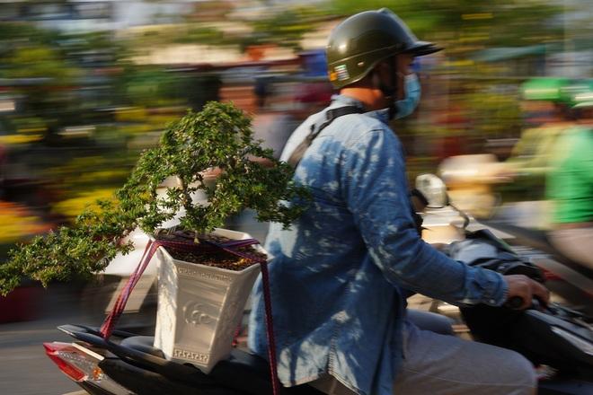 Một lần đi chợ hoa trên bến dưới thuyền độc, lạ nhất Sài Gòn - 27