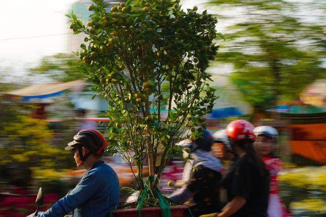 Một lần đi chợ hoa trên bến dưới thuyền độc, lạ nhất Sài Gòn - 26