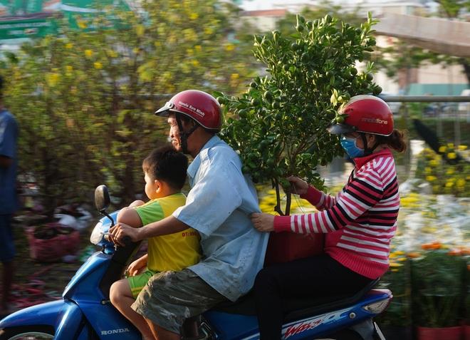 Một lần đi chợ hoa trên bến dưới thuyền độc, lạ nhất Sài Gòn - 25
