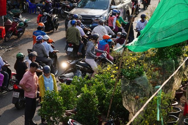 Một lần đi chợ hoa trên bến dưới thuyền độc, lạ nhất Sài Gòn - 34