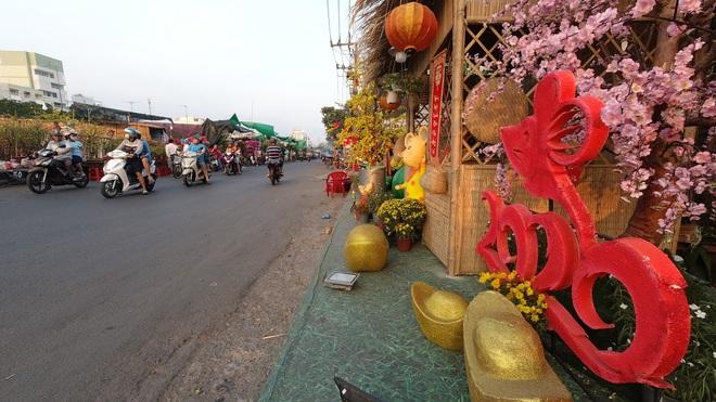 Một lần đi chợ hoa trên bến dưới thuyền độc, lạ nhất Sài Gòn - 5
