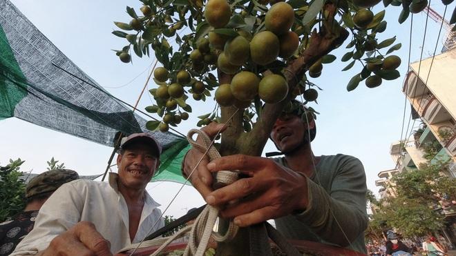 Một lần đi chợ hoa trên bến dưới thuyền độc, lạ nhất Sài Gòn - 12
